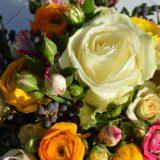 le-carre-carre-roses-bordeaux