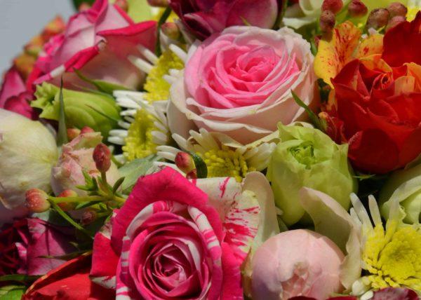 Deuil Carre Rose Bordeaux