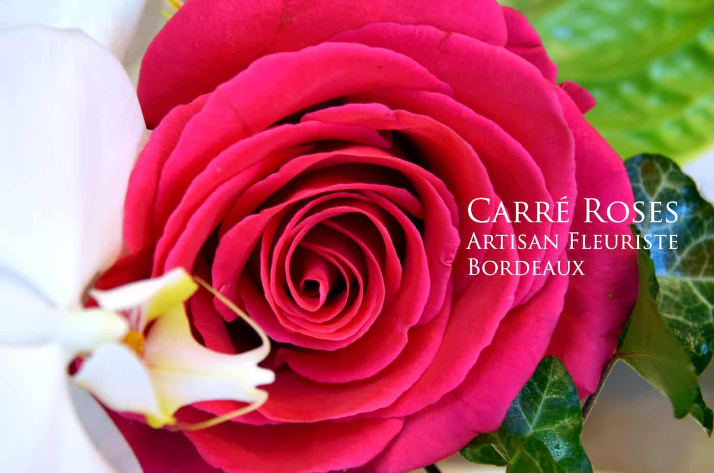 Boutique Carre Roses Bordeaux