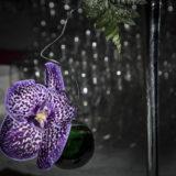 fleurs-décoration-buffet-cocktail-bordeaux