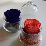 rose-éternelle-fleuriste-bordeaux-décoration-cadeau-anniversaire