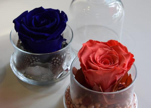 carr roses bordeaux carr roses fleuriste bordeaux. Black Bedroom Furniture Sets. Home Design Ideas