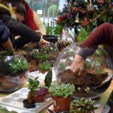 ateliers-professionnels-fleuriste-bordeaux
