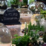 ateliers-terrarium-fleuriste-bordeaux-begles