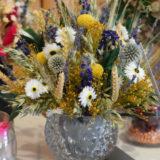 fleurs-sechees-begles