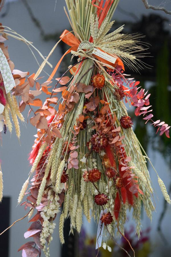 fleurs-sechees-bordeaux-begles