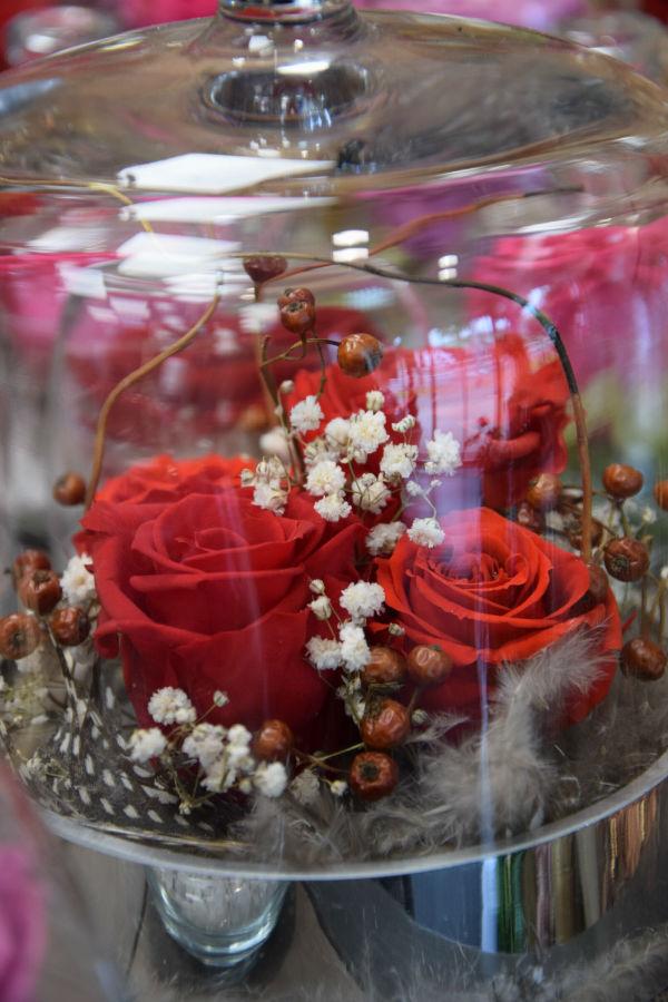 rose eternelle fleuriste begles