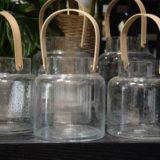verre-terrarium-bordeaux-begles