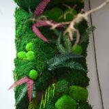 mur vegetal stabilise fleuriste bordeaux