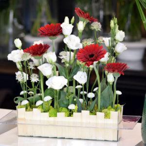 jardin d'intérieur fleuriste