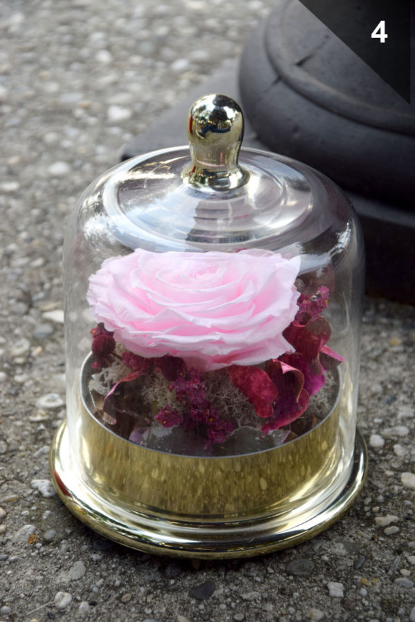 artisan fleuriste bordeaux bègles cloche rose