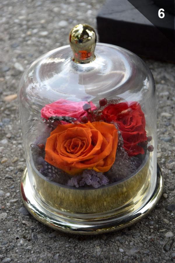 cloche rose éternelle