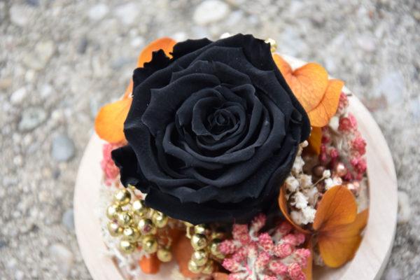 cloche rose éternelle noire bègles