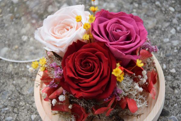 cloche trio roses fleuriste bègles
