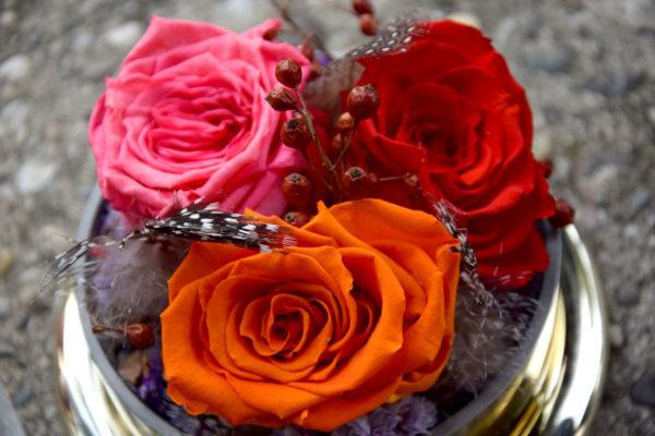 bouquet rose stabilisée plume bègles