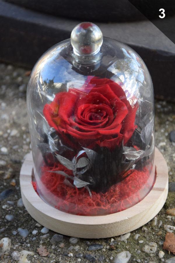 cloche rose éternelle rouge